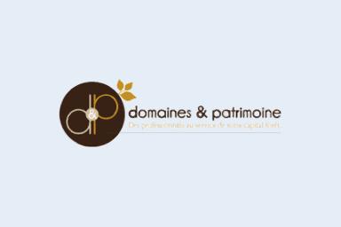 Le logo de notre partenaire Domaines & Patrimoine.